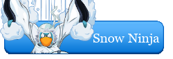 Snow Ninja Website Button